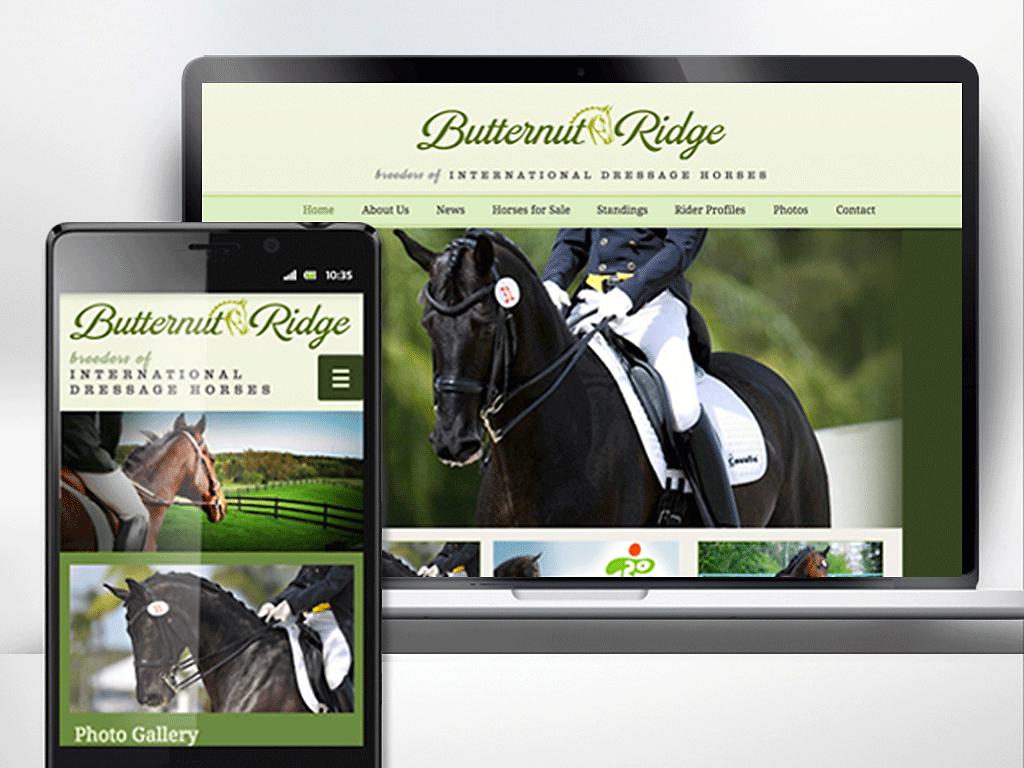 2015 Pan Am Equestrian Games branding.